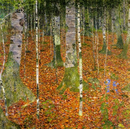 Birch Forest 1 (1903) by Gustav Klimt