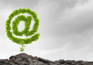 organic email list growth