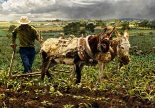 The Mexican Ploughman, by Clark Hulings