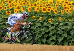 BLAGNAC, FRANCE - JULY 20:  Sandy Casar of France riding for FDJ-Big Mat makes an attack as he passes through a field of sunflowers during stage eighteen of the 2012 Tour de France from Blagnac to Brive-la-Gaillarde on July 20, 2012 in Blagnac, France.  (Photo by Doug Pensinger/Getty Images)